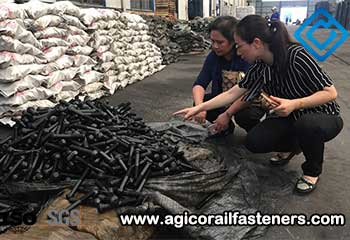 Philippine Customer Visits AGICO For Screw Spike Order